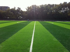 Artificial Grass Seaming Tape for Jointing Artificial Grass